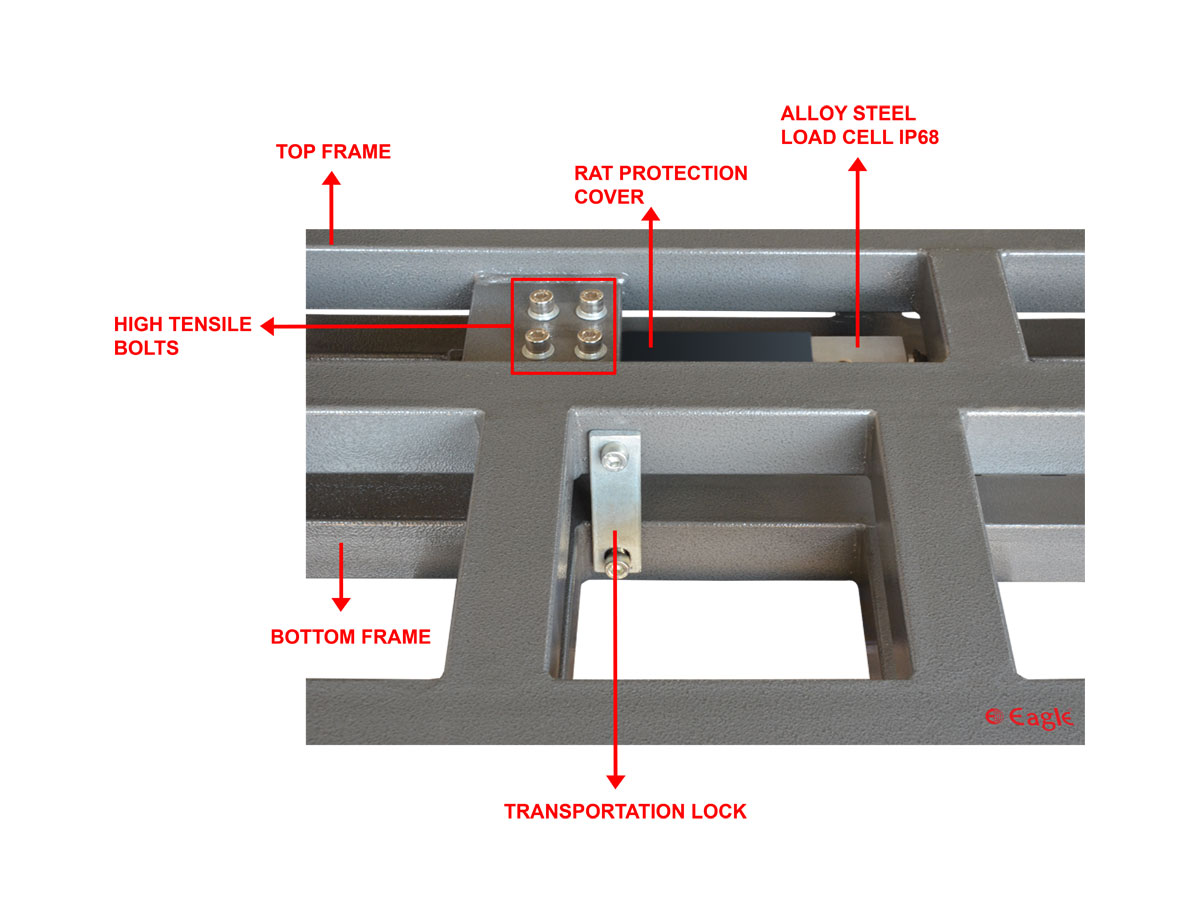 EIW Series: Platform Scale
